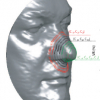 A Riemannian Analysis of 3D Nose Shapes For Partial Human Biometrics