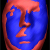 3D Shape-based Face Recognition using Automatically Registered Facial Surfaces