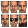 Support Vector Machines in Face Recognition with Occlusions
