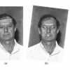 A comparison of discrete and continuous output modeling techniques for a pseudo-2D hidden Markov model face recognition system