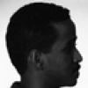 A novel hybrid face profile recognition system using the FERET and MUGSHOT databases