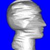 A Novel Volumetric Shape from Silhouette Algorithm Based on a Centripetal Pentahedron Model
