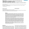 Aggregation of topological motifs in the Escherichia coli transcriptional regulatory network
