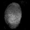 An Adaptive Multiresolution Approach to Fingerprint Recognition