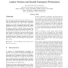 Animat Swarms and Spatial Emergence Phenomena