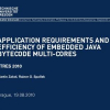 Application requirements and efficiency of embedded Java bytecode multi-cores