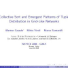 Collective Sort and Emergent Patterns of Tuple Distribution in Grid-Like Networks