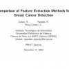 Comparison of Feature Extraction Methods for Breast Cancer Detection
