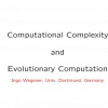 Computational complexity and evolutionary computation