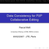 Data consistency for P2P collaborative editing