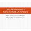 Deep Web Queries in a Semantic Web Environment
