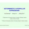 Deterministic Caterpillar Expressions