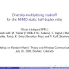 Diversity-Multiplexing Tradeoff for the MIMO Static Half-Duplex Relay
