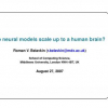 Do Neural Models Scale up to a Human Brain?