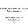 Efficient Algorithms for General Active Learning
