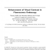 Enhancement of visual contrast in fluorescence endoscopy