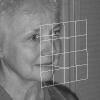Estimating facial pose from a sparse representation