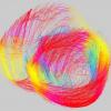Estimating myocardial fiber orientations by template warping