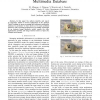 Experience of Animate Similarity Concepts in Multimedia Database