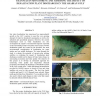 Exploring the Potential of MODIS Visible and Thermal Channels in Monitoring and Assessing the Impact of Desalination Plant Disch