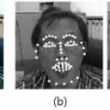 Facial expression analysis with facial expression deformation