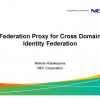 Federation proxy for cross domain identity federation