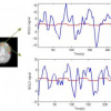 FMRI brain activity and underlying hemodynamics estimation in a new Bayesian framework