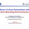 Green Virtual Enterprises and Their Breeding Environments