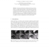 Hatch Textures for Virtual Endoscopy