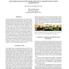 Head-size equalization for better visual perception of video conferencing