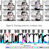 Real-time facial expression recognition with illumination-corrected image sequences