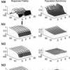 Implications of Noise and Neural Heterogeneity for Vestibulo-Ocular Reflex Fidelity