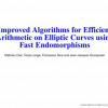Improved Algorithms for Efficient Arithmetic on Elliptic Curves Using Fast Endomorphisms