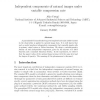 Independent components of natural images under variable compression rate