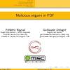 Malicious origami in PDF
