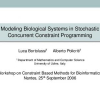 Modeling Biological Systems in Stochastic Concurrent Constraint Programming