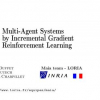 Multi-Agent Systems by Incremental Gradient Reinforcement Learning