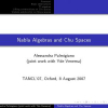 Nabla Algebras and Chu Spaces