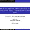 Online, self-supervised terrain classification via discriminatively trained submodular Markov random fields
