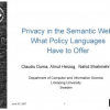 Privacy in the Semantic Web: What Policy Languages Have to Offer