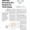 Selectively Stimulating Skin Receptors for Tactile Display