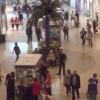 Mall Dataset