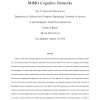Spectrum management and power allocation in MIMO cognitive networks