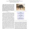 Stereo vision and terrain modeling for quadruped robots