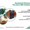 Sustained Petascale: The Next MPI Challenge