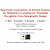 Systematic Construction of Texture Features for Hashimoto's Lymphocytic Thyroiditis Recognition from Sonographic Images