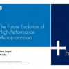 The Future Evolution of High-Performance Microprocessors