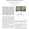 The Meme Ranking Problem: Maximizing Microblogging Virality