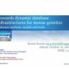 Towards dynamic database infrastructures for mouse genetics