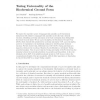 Turing universality of the Biochemical Ground Form